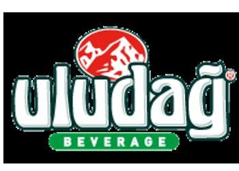 Ekin Adademir Limited - Uludağ